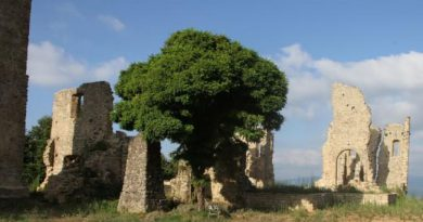 Gita sociale a San Mango Cilento, itinerario socio culturale di scoperta e condivisione.